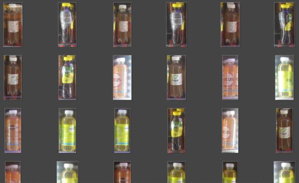 Der Algorithmus wird mit einer Menge Fotos trainiert
